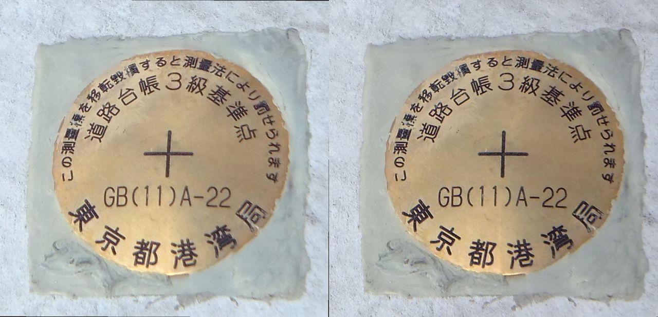 TGBDSCF4669.JPG