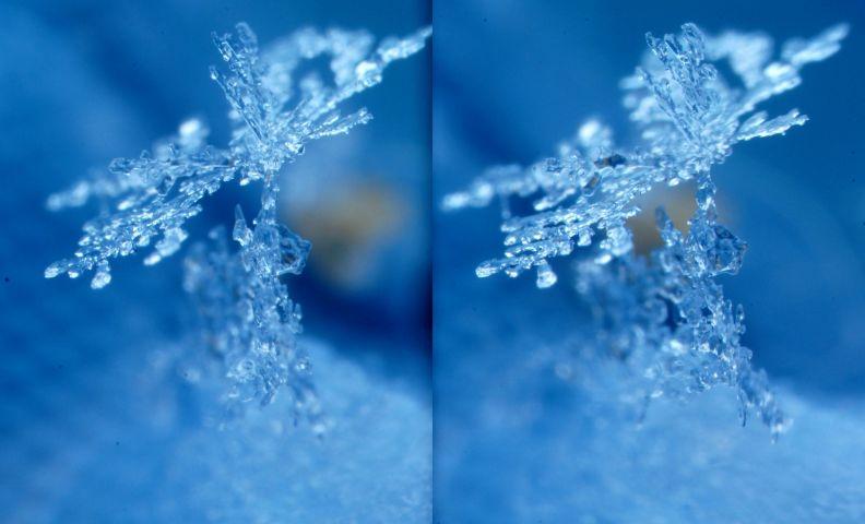 snowDSC01524.JPG